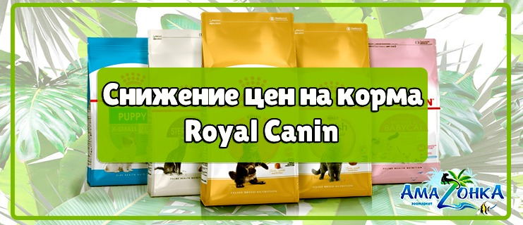 Скидки на корма Royal Canin